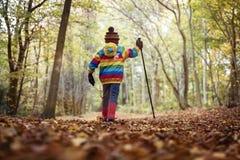 走在秋天和冬天 免版税库存图片