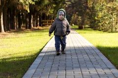 走在秋天春天公园的逗人喜爱的小孩男婴 库存图片