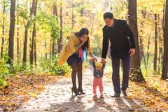 走在秋天森林健康生活方式的可爱的家庭 免版税库存图片