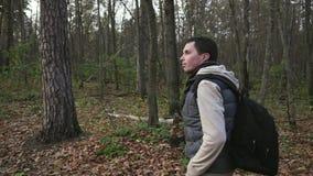 走在秋天森林和享受好天气的年轻人 影视素材