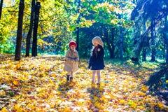 走在秋天的两个美丽的可爱的女孩 免版税库存照片