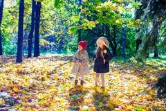 走在秋天的两个美丽的可爱的女孩 库存图片