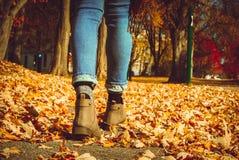 走在秋季的叶子的女孩 免版税库存图片