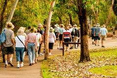 走在自然的小组老和健康人民 库存图片