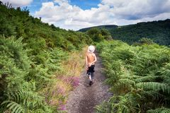 走在自然道路, Dartmoor,英国的孩子 库存照片