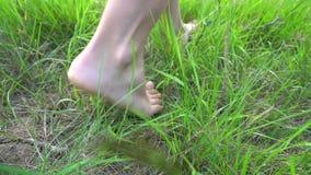 走在自由的草、概念和幸福的赤脚 股票录像