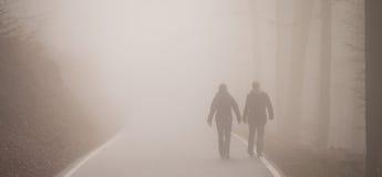 走在薄雾的孪生 库存图片