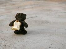 走在街道上的熊 库存照片