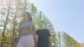 走在装饰树中的一对年轻被启发的夫妇握手 影视素材