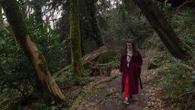 走在足迹的妇女通过赤柏松黄杨木潜叶虫树丛,绿色森林在Khosta 股票录像