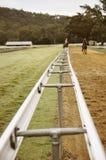 走在跑道的二匹马 免版税库存照片