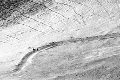 走在道路的三个人和两条狗盖由在Monte Cucco翁布里亚,意大利的雪 图库摄影
