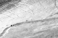 走在道路的三个人和两条狗盖由在Monte Cucco翁布里亚,意大利的雪 免版税库存图片