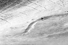 走在道路的三个人和两条狗盖由在Monte Cucco翁布里亚,意大利的雪 免版税库存照片