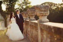 走在金黄秋天自然的新娘和新郎 免版税库存照片