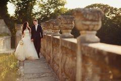 走在金黄秋天自然的新娘 免版税库存照片
