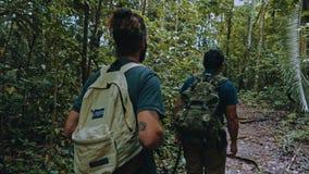 走在雨林道路的一条线的人们在横跨豪华的植被的一次远足期间 免版税库存图片
