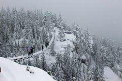 走在雪吊桥 免版税库存照片