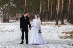 走在雪的一个冬天森林里的年轻夫妇新婚佳偶 免版税图库摄影