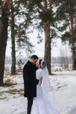 走在雪的一个冬天森林里的年轻夫妇新婚佳偶 库存照片
