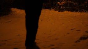 走在雪的人在晚上 股票录像