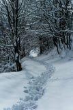 走在雪路的北欧人 库存照片