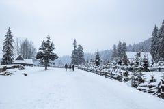 走在雾,杉木a的多雪的冬天路的三条人和狗 免版税库存照片