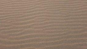 走在风起波纹的沙子 影视素材