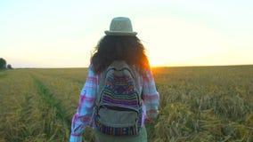 走在麦田的妇女游人在夏天日落 徒步旅行者帽子的旅客妇女有hikking本质上的背包的 女孩 股票录像