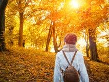 走在黄色公园的秋天 免版税库存照片