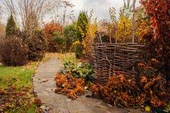 走在11月庭院里 与土气篱芭的晚秋天视图 库存照片