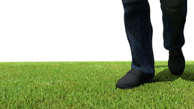 走在绿草前面 皇族释放例证