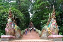 走在entran的台阶的旅客外国人和泰国人 库存图片