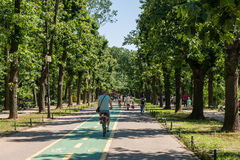 走在Herastrau公园的人们 免版税库存图片