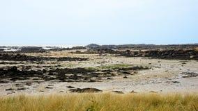 走在Iles de Chausey低潮风景的人们  图库摄影