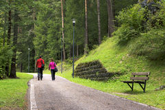 走在Lunga的年轻摄影师夫妇通过delle Dolomiti 威尼托,意大利,欧洲 免版税库存照片