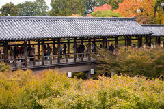 走在Tofukuji寺庙的游人在秋天晒干 免版税图库摄影