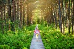 走木道路的逗人喜爱的小女孩通过密集的森林在美好的夏天晚上 库存照片