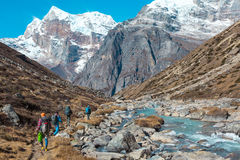 走沿在山背面图的小河的小组远足者 免版税图库摄影