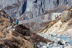 走沿在山背面图的小河的小组远足者 免版税库存图片