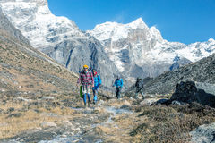 走沿在被定调子的高山的小河的小组远足者 库存图片