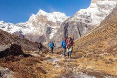 走沿在高山的小河的小组远足者 图库摄影
