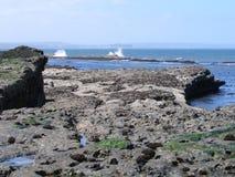 走沿在filey brigg东海岸约克夏的沿海道路 图库摄影