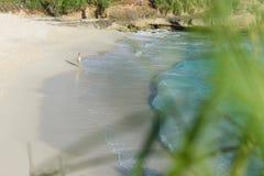 走沿梦想海滩的女孩在lembongan的努沙,巴厘岛,印度尼西亚2的日落 免版税库存照片