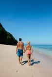 走沿海岸的蜜月夫妇 免版税库存照片