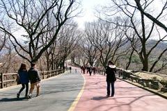 走沿车道的人们在Namsan公园 图库摄影