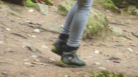 走沿道路的苗条女孩在具球果森林旅游业里在高加索储备 旅游` s的特写镜头 股票录像