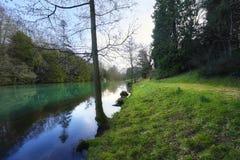 走由一个湖在冬天 免版税库存图片