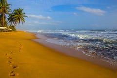 走的一个沙滩在斯里兰卡 库存图片