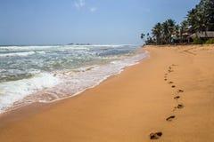 走的一个沙滩在斯里兰卡 库存照片